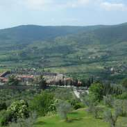 Another Tuscan wine view !!