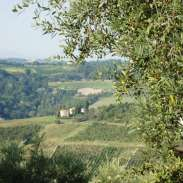 view from the villa 2